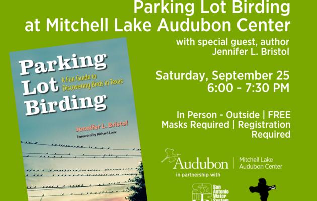 Parking Lot Birding at Mitchell Lake Audubon Center