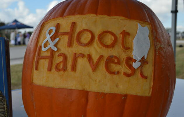 Hoot & Harvest Festival