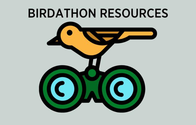 Birdathon Resources